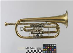 Trompete in Es   Schuster & Co