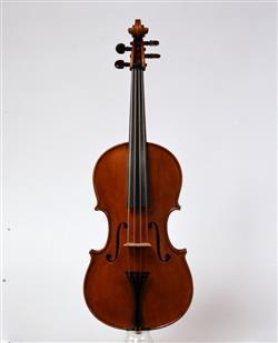 viola | Serafino Casini