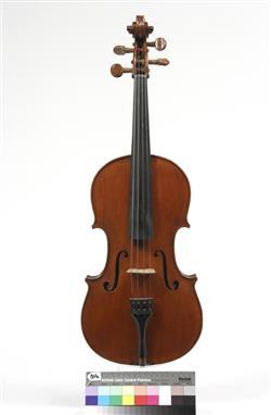 viola | Orsolo Gotti