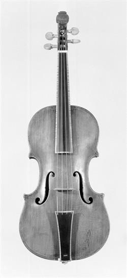 Violin | Tomaso Castelli